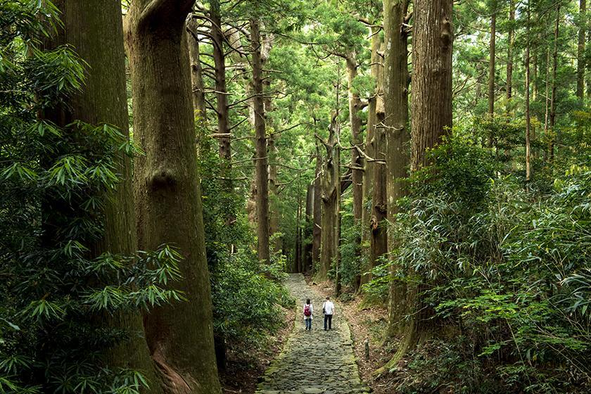 熊野古道 Kumano_Kodo