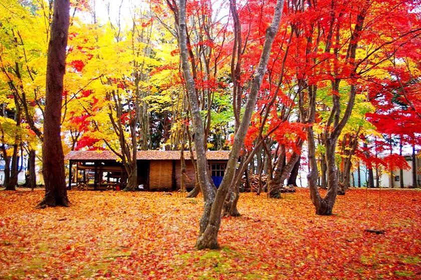 函館 香雪園 kosetsuen