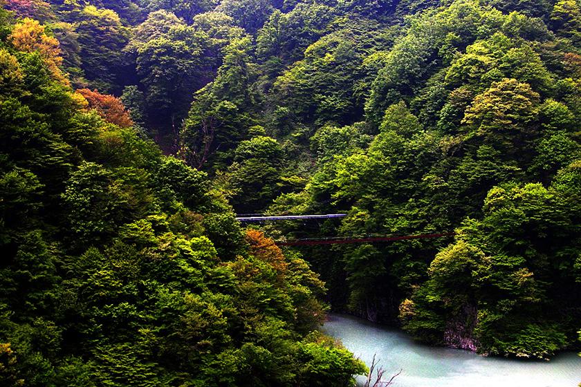 黑部峽谷鐵道 kurobe_gorge_railway